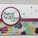 Picture Perfect Birthday-WWYS#155