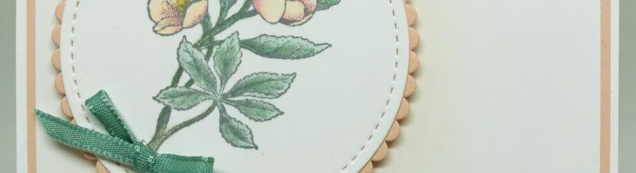 Botanical Prints Product Medley – Cherry Blossom Card