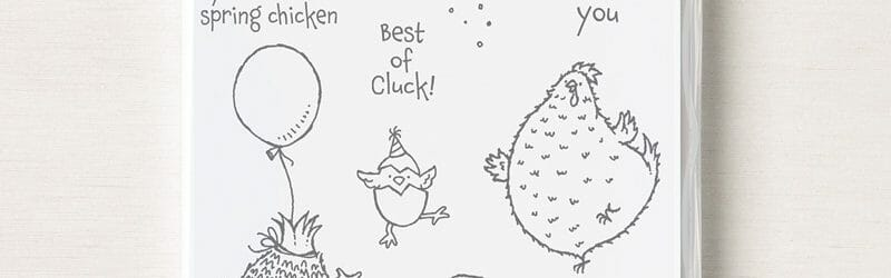Hey Birthday Chick Virtual Class – Over The Border With Di & Marcy